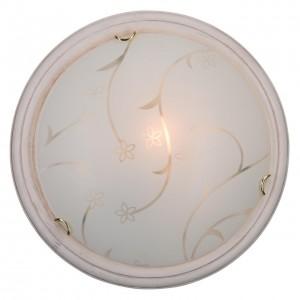 Настенно-потолочный светильник SONEX BLANKETA GOLD 102/BL