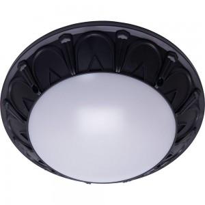 Настенно-потолочный светильник Feron Маэстро ФБУ 05-2*20-015 41361