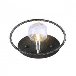 Настенный светильник Favourite Lick 1903-1W