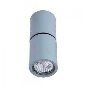 Потолочный светильник Divinare GAVROCHE posto 1800/05 PL-1