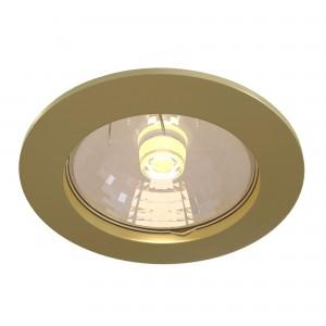 Встраиваемый светильник Technical DL009-2-01-G